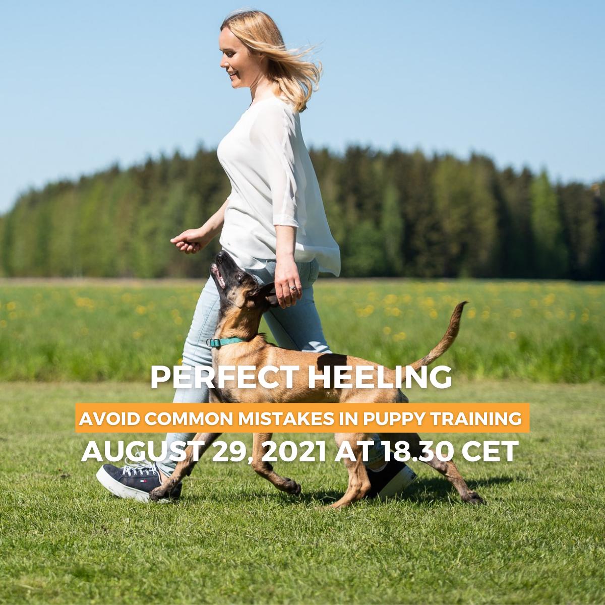 Mia Skogster heeling lecture online